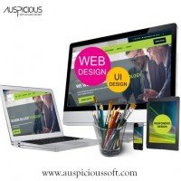 Top Web Design Companies Australia