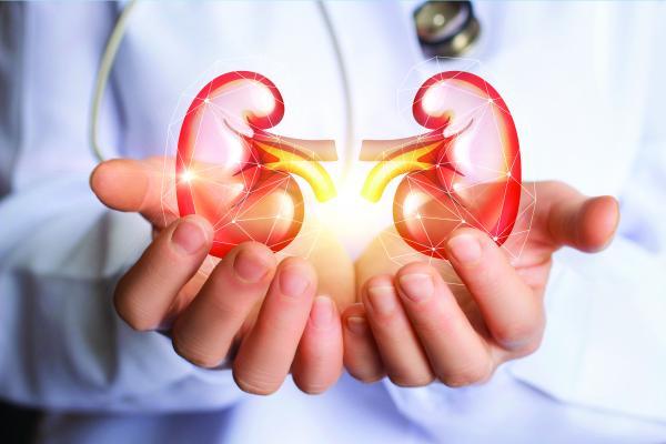 Find the best Kidney Transplant in Delhi